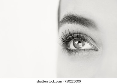 Black and white close up beauty portrait of beautiful young woman eye wearing make up with perfect skin, looking up, seeing. Eyes, pupil, lashes. brows. Healthy sight vision. Cosmetics lifestyle.
