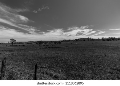 Black and White Farmland in NSW, Australia