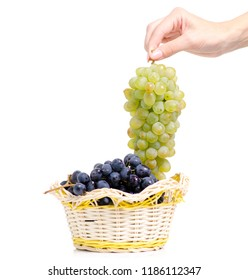 Black and white grapes in a basket  in hand on a white background isolation
