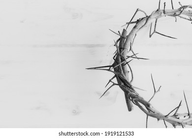 black and white half crown of thorns with copy space