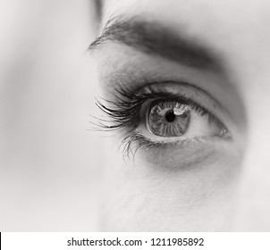 Black and white half face section beauty portrait of teenager young woman looking ahead with clear eyes, beautiful lifestyle. Female seeing, health lifestyle. Eye sight vision senses.