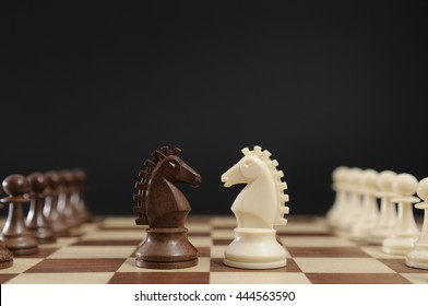 Black and white horses on a chessboard
