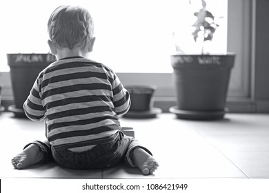 A black and white image of the back of an anonymous playing child, sitting on the ground in front of a window. A concept of the loving  memory of a deceased child. A lot of negative space for text.