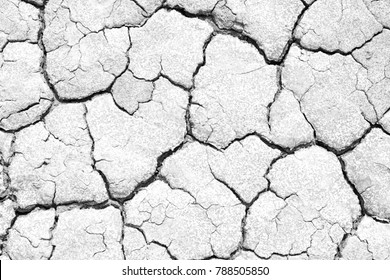 Black and white image of crack soil texture background