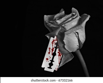 A black and white image of a rose with a bloody razor blade