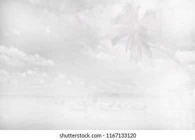 black and white image of seaside with coconut palm tree over sky and clouds - abstract background