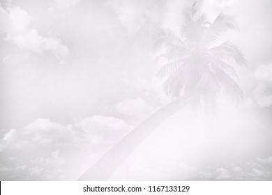 black and white image of sky and clouds with coconut tree - abstract background