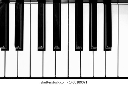 Black and white keys of the synthesizer