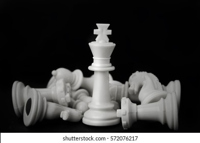 Black and White King and Knight of Chess on Dark Background, Leadership Concept