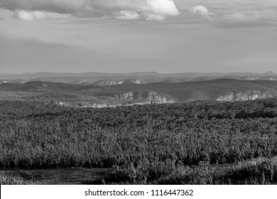 Black and White Landscape of the Blue Mountains, NSW, AUstralia