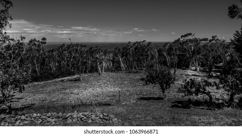 Black and White Landscape of The outback, Blue Mountains, Australia