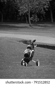 Black and white lone golf holding golfer's clubs cart at the side of tee off point.