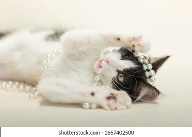 Black and white long hair fluffy kitten laying on white blanket playing with white pearls.