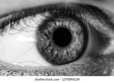 Black and white macro of an eye and iris
