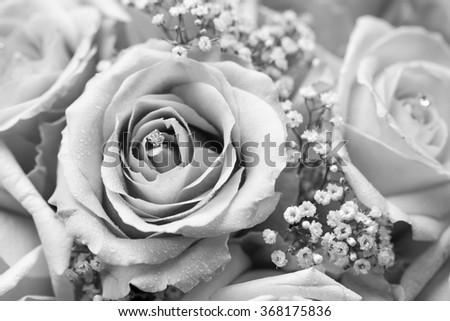 Black White Macro Photo Detailed Bouquet Stock Photo Edit Now