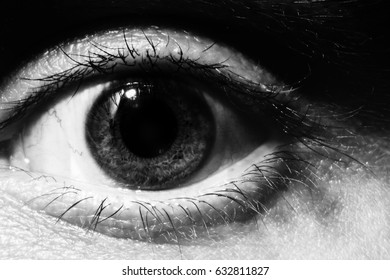 Black and white Male eye macro. Wide open, surprised male look