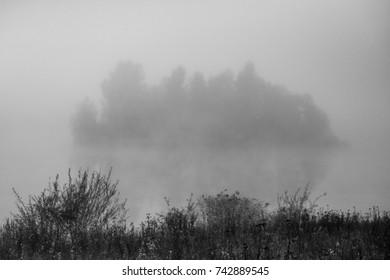 Black and white misty autumn lake