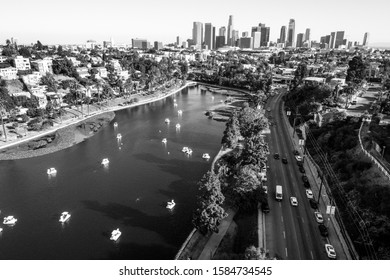black and white monochrome LA photography aerial drone views of Los Angeles California summer views of palms trees and tropical west coast vibes