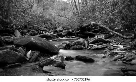 Black and White Nature Photography of a Roaring River in the Deep Woods of the Great Smoky Mountains Park.