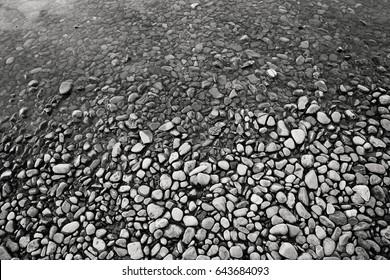 Black and white pebbles in Lake McDonald at Glacier National Park Montana