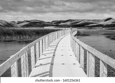 A black and white photo of a long boardwalk in bright sunshine stretching through a marshland landscape to distant sand dunes.