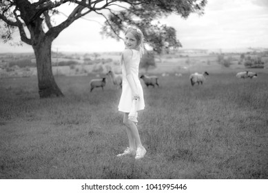 Black and white photo of a sweet girl in a white dress standing in a meadow with sheep, looking cutely over shoulder.