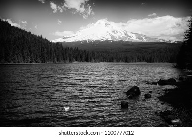 Black and white photo of Trillium Lake with Mount Hood in the background.