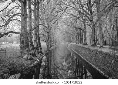 Black and white photo of a water canal bordered by trees.