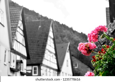 A black and white photograph of a Bavarian village. The houses have high sloping roofs and wooden detailing. Red and pink geraniums are in a window box.