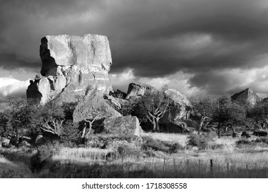Black and white photograph of  the typical Patagonia landscape, Torres del Paine, Patagonia, Chile