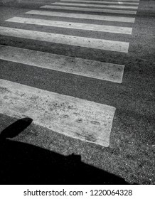 Black and white photographs of the silhouette of the car and crosswalk are provided for the safety of people crossing the road and reducing the incidence of accidents.