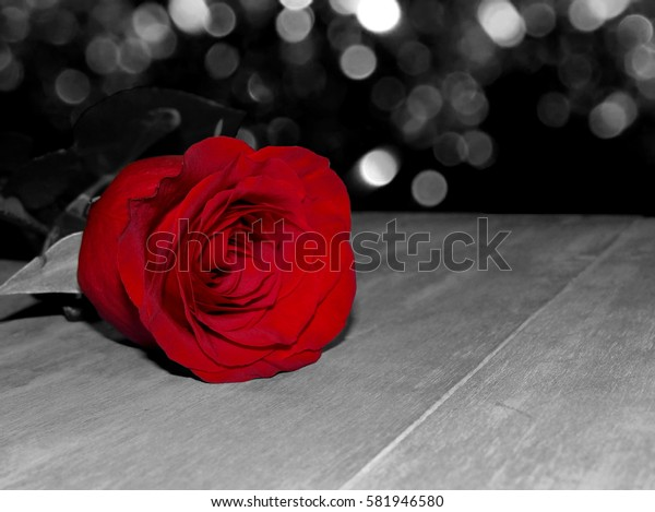 black and white photography with red rose