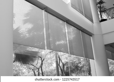 black and white picture of long blind,jalousie,curtain, Louvers , shade, sunblind, roller, shutter protected sunlight background and glass room.