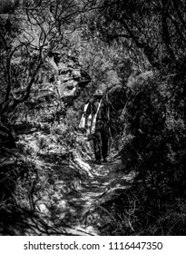 Black and White picture of a trail to Wentworth Falls, Blue Mountains, NSW, Australia