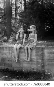 Black and white portrait of girls sitting on a fence with a dandelion in hands, summer