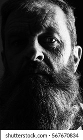 Black and white portrait picture of a senior man with a full beard. Close up head shot with close up of face. Grumpy serious facial expression. Viking type full beard.