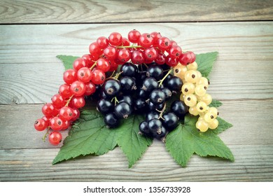 Black, white and red currants. Fresh berries closeup. Top view. Background of fresh berries. Various fresh summer fruits on wooden background.