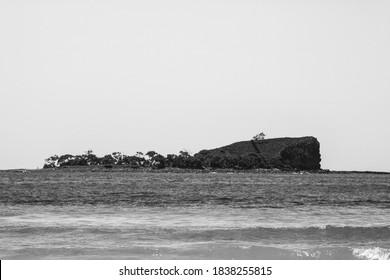 A black and white rendition of Old Woman Island, Mudjimba