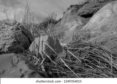 Black and white rocks and trampled grass on a well traveled trail.