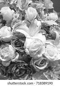 Black and white rose gray flower background for your design.
