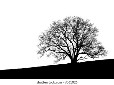 Black and white silhouette of a beautifully shaped and very intricately detailed tree sitting at the crest of a hill.