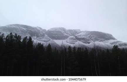 Black and white snowy mountains with forest below
