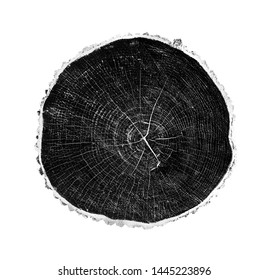 Black and white stamp of wood texture of tree rings from a slice of log. Negative image of cut tree.