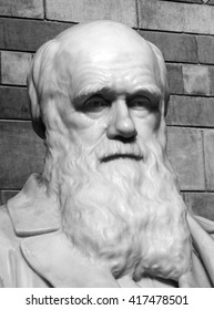 Black and white statue of Charles Darwin 1809-82 which was placed in the central hall of the Natural History Museum in 1885, London, England, UK. Darwin is noted for his work on evolution