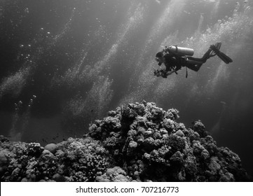 Black and white underwater photo of a scuba diver approaching a coral reef on the bottom of the sea while air bubbles are migrating to the surface. Captured in the Red Sea.
