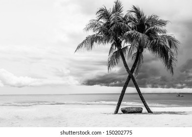 Black & White view of Beautiful beach with palms, Thailand