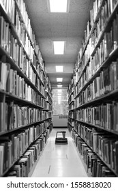 Black and white view between shelves of library books, in an education background