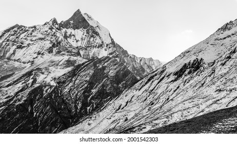 Black and white view of Mount Machhapuchhre or Fishtail Mountain, Annapurna Conservation Area, Himalaya, Nepal.