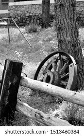 Black and white view of an old cartwheel leaning against the trunk of a pine tree behind a wooden fence in the country side