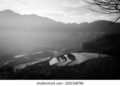 Black and white view of rice terraces panorama (Yuanuang, Yunnan, China)